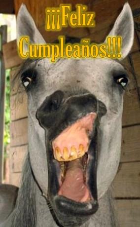 Saludos graciosos de cumpleaños