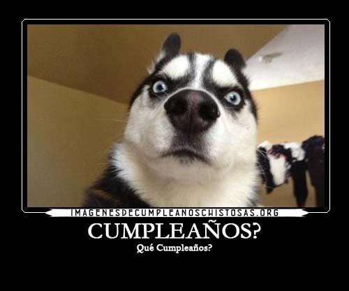 fotos chistosas de cumpleaños para enviar por whatsapp